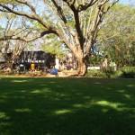 ジンバブエにこんな憩いの場所があったとは