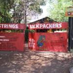 【世界の宿情報】ジンバブエ/Victoria Falls/Shoestrings Backpackers