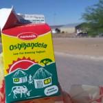 ヒッチハイクでナミビア〜南アフリカ国境越え