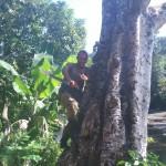 バラコアでのプチジャングル冒険記
