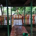 【世界の宿情報】ニカラグア/オメテペ島/Hostel Ibesa2