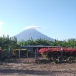 9時間にも及ぶ地獄のオメテペ島一周サイクリング
