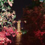 広州から桂林へ。桂林米粉と夜の桂林観光